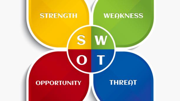 SWOT анализ человека